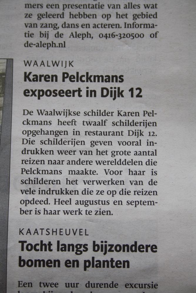 artikel_karen_brabantsdagblad_04082011